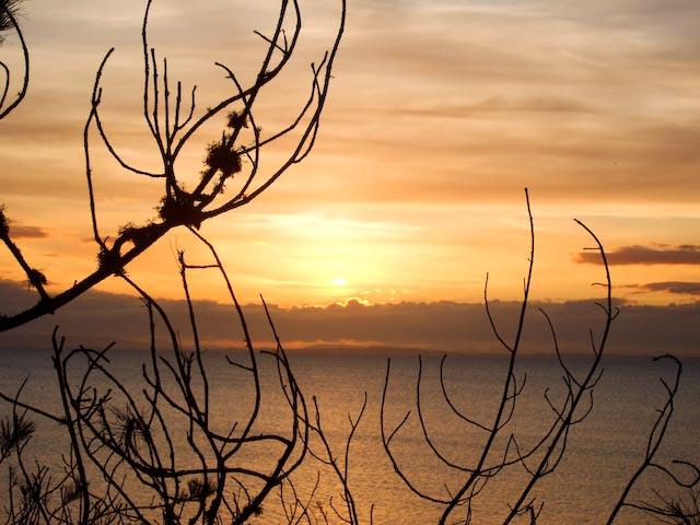 Playa de Roseisle