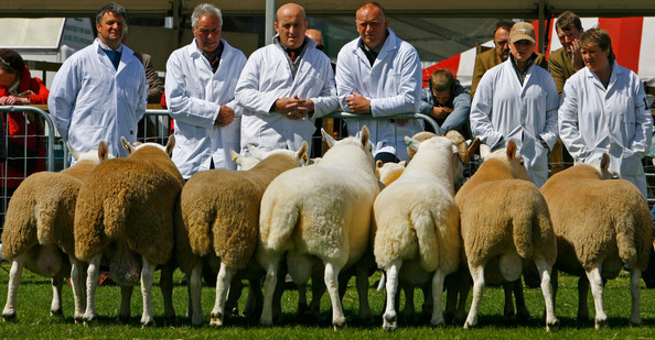 Royal Highland Show, gastronomía y mundo rural