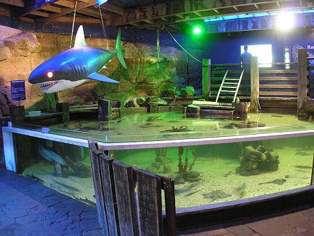 El Aquarium de Saint Andrews