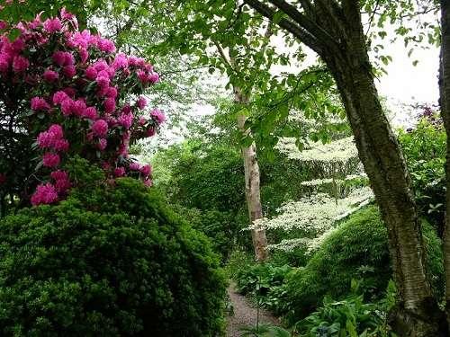 Jardín Branklyn, paisajes majestuosos en Escocia
