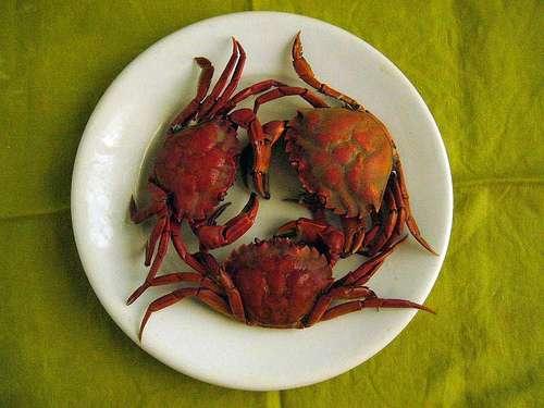 un plato de cangrejos