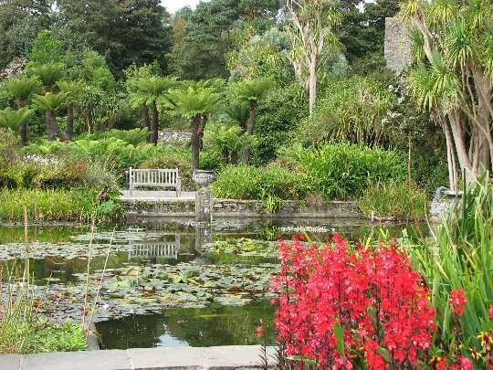 El jard n bot nico de logan for Jardin botanico edimburgo
